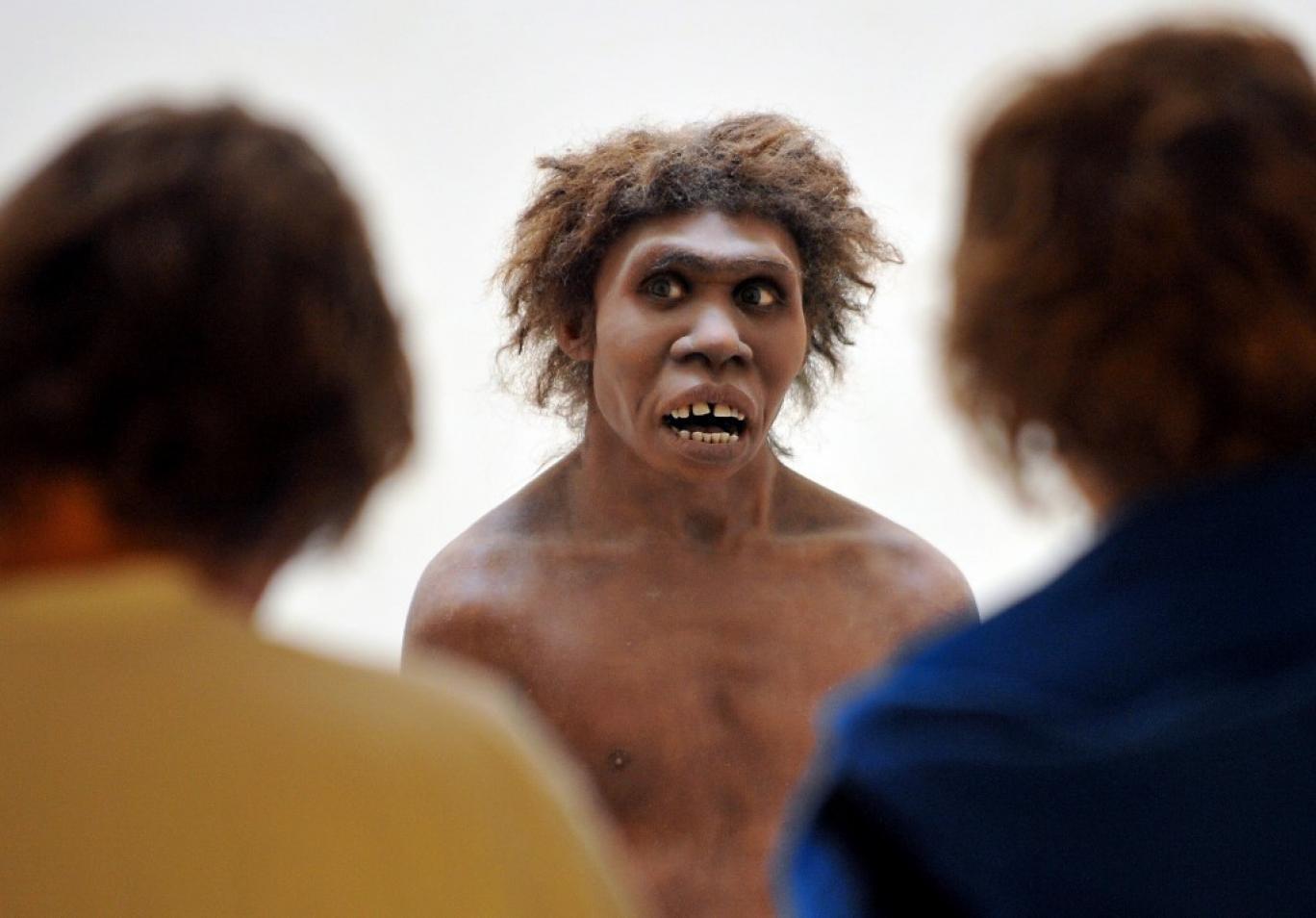 رابطه انسانهای اولیه با نئاندرتالها